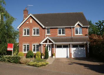 Thumbnail 5 bed detached house to rent in Shipley Close, Alton