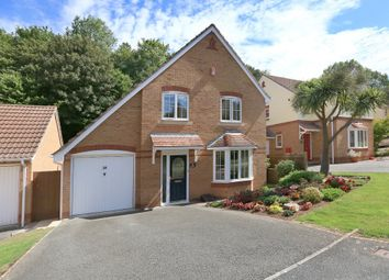 Thumbnail 4 bed detached house for sale in The Hollows, Plymouth