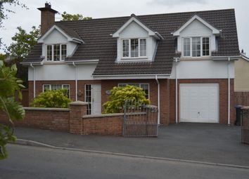 Thumbnail 4 bedroom detached house for sale in Watson's Road, Newry