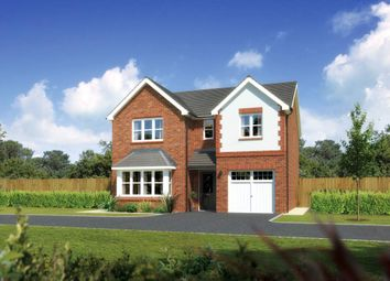 "Thumbnail 4 bed detached house for sale in ""Hampsfield"" at Ffordd Eldon, Sychdyn, Mold"