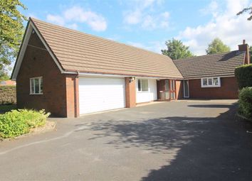 Thumbnail 2 bed detached bungalow to rent in Lightfoot Lane, Fulwood, Preston