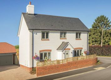 "Thumbnail 4 bed detached house for sale in ""The Nessvale"" at Ramsdean Road, Petersfield"