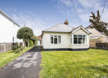 Thumbnail 3 bedroom bungalow for sale in Barton On Sea, New Milton, Hampshire
