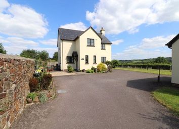 Thumbnail 3 bed detached house for sale in East Street, Sheepwash, Beaworthy