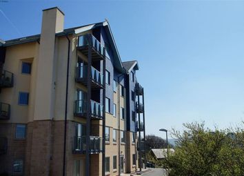 Thumbnail 4 bed flat to rent in Parc Y Bryn, Aberystwyth