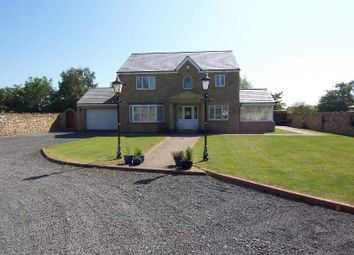 Thumbnail 4 bed detached house for sale in Longhoughton, North End, Little Garth