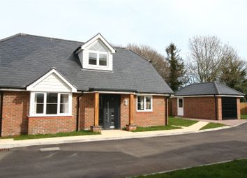 Thumbnail 4 bed detached house to rent in Paddock View, Lower Horsebridge, East Sussex