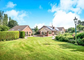 Thumbnail 4 bed detached bungalow for sale in Church Meadows, Whitchurch, Shropshire