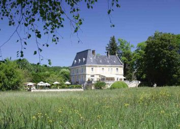 Thumbnail 11 bed property for sale in Fabulous Chateau, Guest Cottages, Dordogne