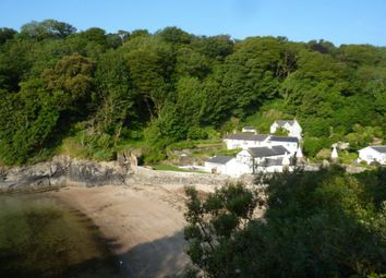 St. Catherines Cove, Fowey PL23