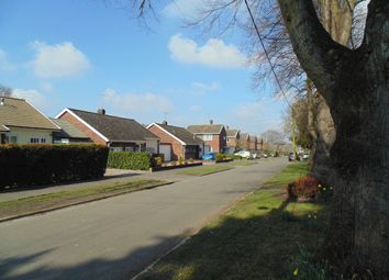 Thumbnail 3 bedroom semi-detached house to rent in The Close, Brundall