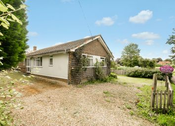 Thumbnail 3 bedroom detached bungalow for sale in Water Lane, Bishop's Sutton, Alresford, Hampshire