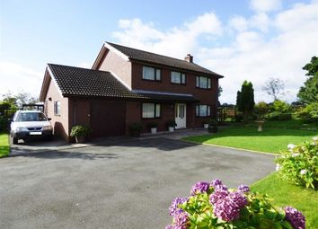Thumbnail 4 bed detached house for sale in Brynllugan, Cefn Coch, Welshpool
