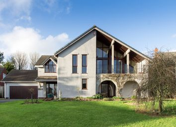 Thumbnail 4 bed detached house for sale in Skylark Rise, Woolwell, Plymouth