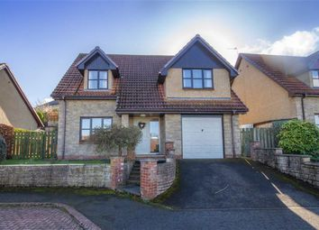 Thumbnail 4 bed detached house for sale in Ryecroft Park, Wooler, Northumberland