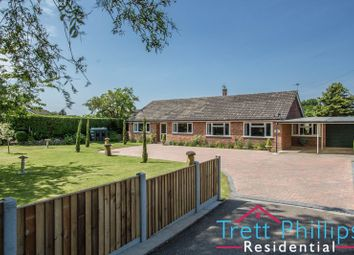 Thumbnail 4 bed detached bungalow for sale in Old Yarmouth Road, Sutton, Norwich
