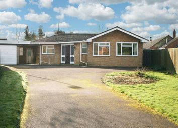 Thumbnail 3 bed bungalow for sale in Lauds Road, Crick, Northampton