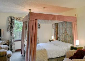 Thumbnail 7 bed detached house for sale in Newton Stewart, Dumfries & Galloway