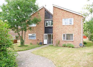 Thumbnail Studio for sale in Birdwood Grove, Portchester, Fareham