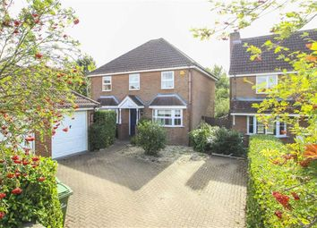 Thumbnail 4 bed detached house to rent in Merthen Grove, Tattenhoe, Milton Keynes