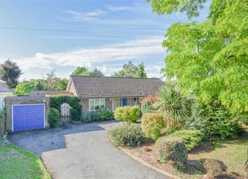 Thumbnail 3 bed detached bungalow for sale in Gypsy Lane, Great Amwell, Hertfordshire
