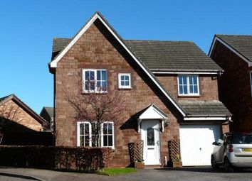 Thumbnail 4 bed detached house to rent in Pennine Drive, Paignton, Devon