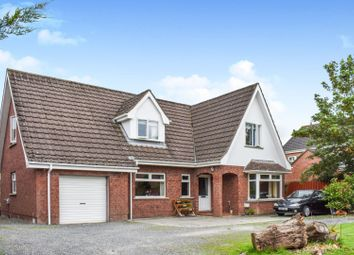Thumbnail 4 bed detached house for sale in Kesh Road, Lisburn