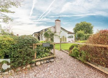 Thumbnail 3 bed detached bungalow to rent in Puddington Village, Puddington, Neston, Cheshire
