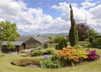 Thumbnail 3 bed terraced house for sale in Stichill, Stichill, Kelso, Scottish Borders