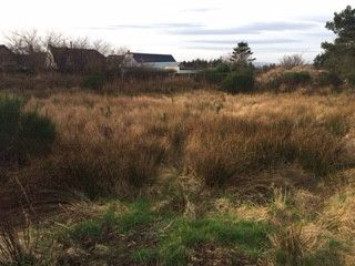 Thumbnail Land for sale in Lower Auchenreath, Fochabers