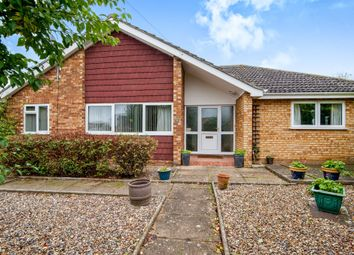 Thumbnail 4 bedroom detached bungalow for sale in Wayland Avenue, Watton, Thetford