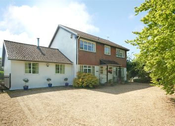 Thumbnail 4 bed detached house for sale in East Woodyates, Nr Sixpenny Handley, Salisbury
