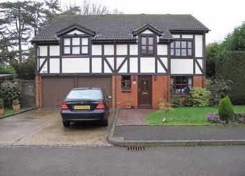Thumbnail 4 bed detached house to rent in Merlin Close, Ifield, Crawley