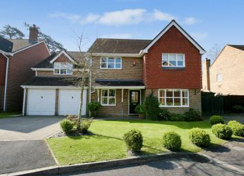 Thumbnail 5 bed property for sale in Grovebury, Locks Heath, Hampshire