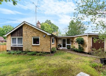 Thumbnail 2 bed detached bungalow for sale in The Ride, Ifold, Billingshurst