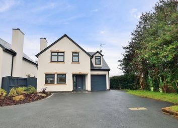 Thumbnail 4 bed detached house for sale in Vicarage Lane, Frodsham