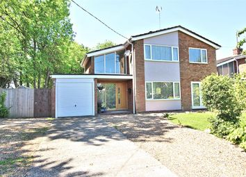 Thumbnail 4 bed detached house for sale in Sharnbrook Road, Souldrop, Bedfordshire