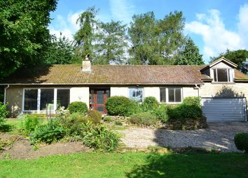 Thumbnail 4 bed property for sale in South Cadbury, Somerset