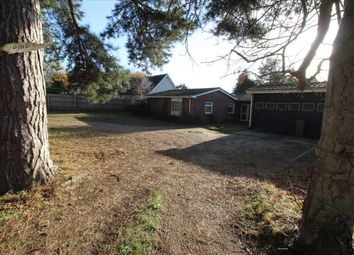 Thumbnail 3 bed bungalow to rent in Pinetrees, Purdis Farm Lane, Ipswich