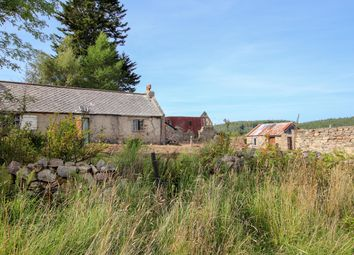 Thumbnail Land for sale in Lochend Cottage, Drummuir
