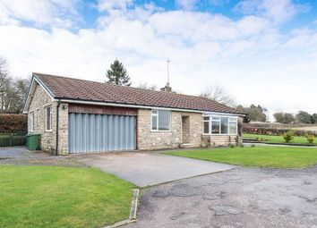 Thumbnail 3 bed bungalow to rent in Slade View, Slade Hooton, Laughton, Sheffield