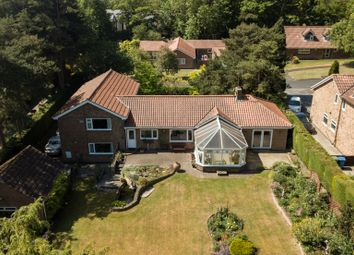 Thumbnail 4 bed detached house for sale in Hall Walk, Welton, Brough