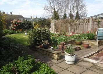 Thumbnail 3 bed semi-detached house to rent in Whitehall Gardens, Canterbury