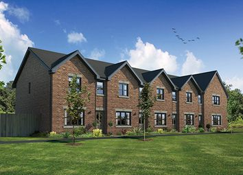 "Thumbnail 3 bed terraced house for sale in ""Argyll Mid"" at Harrowslaw Drive, Hamilton"