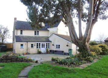 Thumbnail 5 bed detached house for sale in Burnt House, Main Road, Woolaston, Lydney