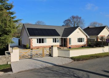 Thumbnail 4 bed detached bungalow for sale in Pen Y Fron Road, Pantymywn
