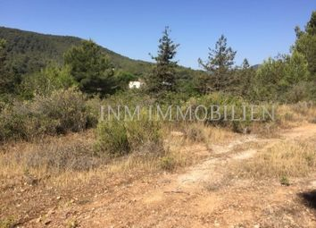 Thumbnail Land for sale in 07818, San Josep, Spain