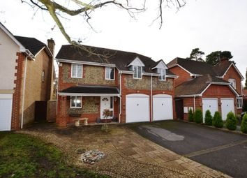 Thumbnail 4 bed detached house to rent in Ridgewood Drive, Frimley, Camberley