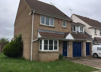 Thumbnail 4 bed link-detached house to rent in Broadoak Rd, Langford, Bristol