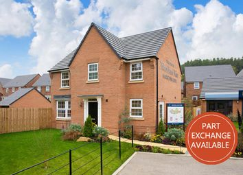 """Thumbnail 4 bed detached house for sale in """"Mitchell"""" at Craneshaugh Close, Hexham"""